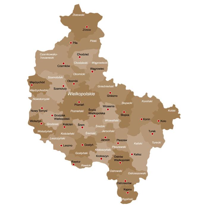 Powiaty W Polsce Mapa Powiatow Wojewodztwo Wielkopolskie